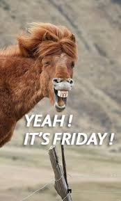 Have a Wonderful Weekend!